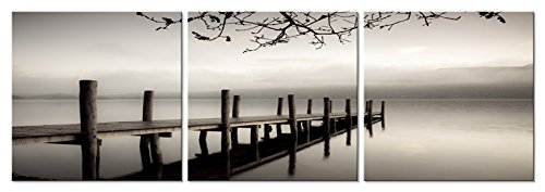 Pyradecor Peace 3 Panels Black And White Landscape Giclee