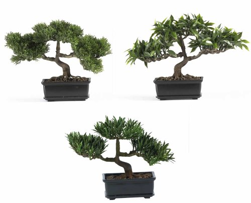 Nearly Natural 4121 Bonsai Decorative Silk Plant Collection, Plastic, 12-Inch, Green