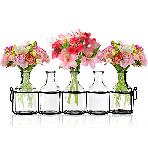 Small Bud Glass Vases In Black Metal Rack Stand Window Sill Display